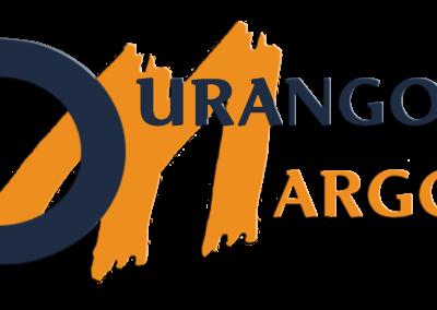 Logo DM transparente